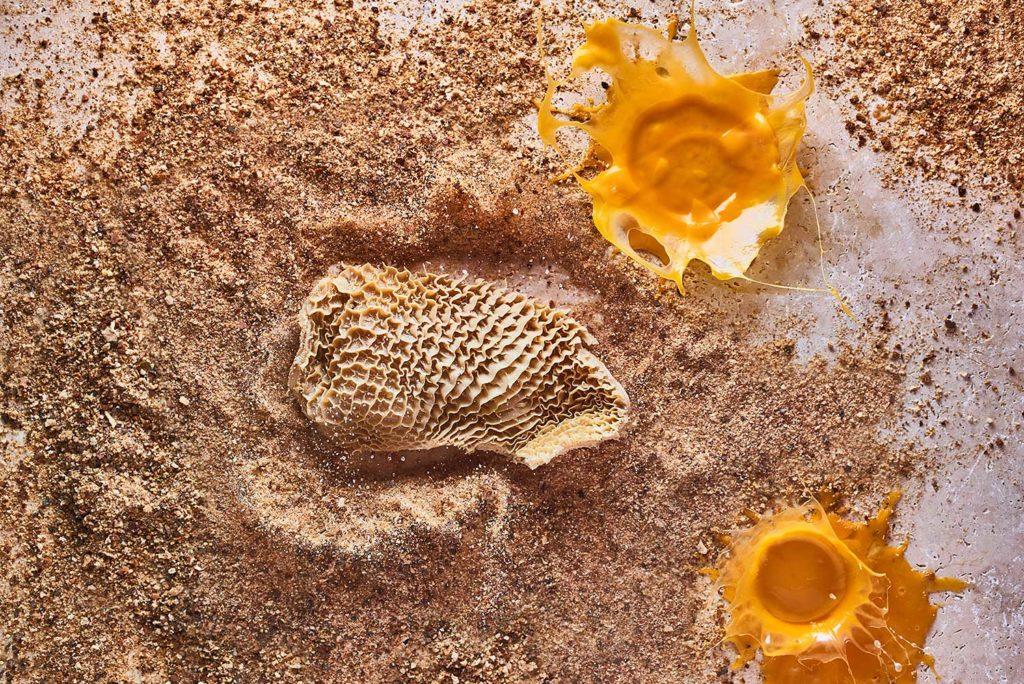photographie artistique plat emblématique gastronomie lyonnaise